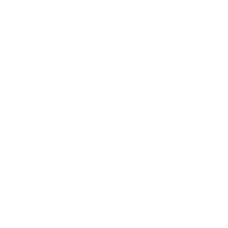 Coberseguridad web